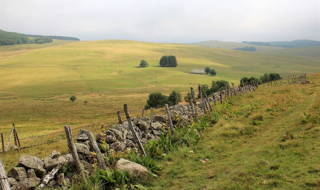 Walk path in Aubrac