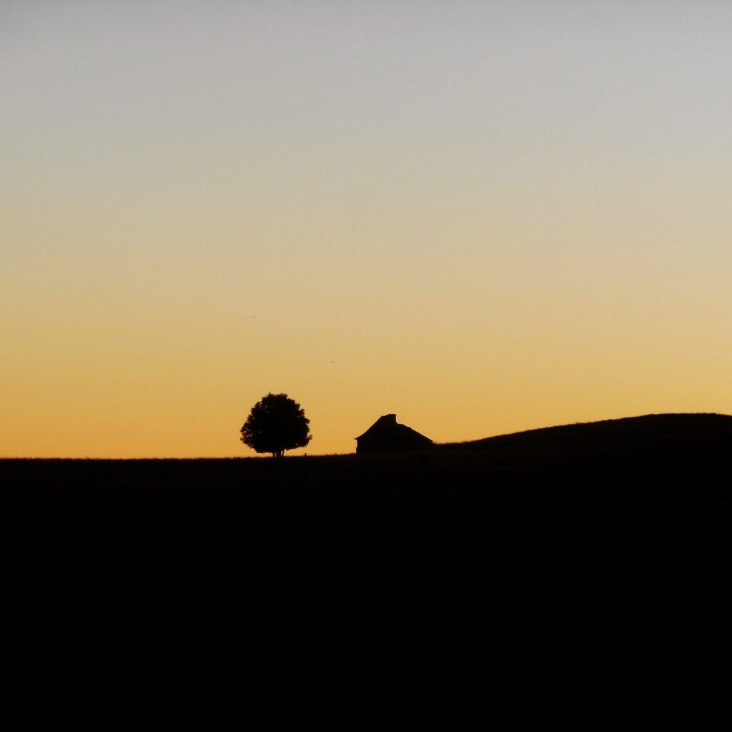 Aubrac at sunset